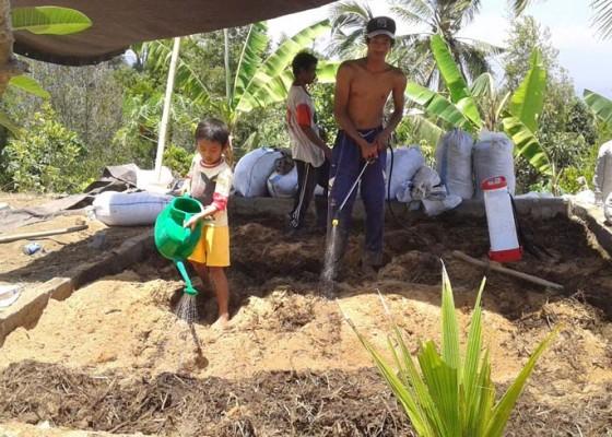 Nusabali.com - perbekel-cempaga-putu-suarjaya-sulap-sampah-jadi-pupuk-organik