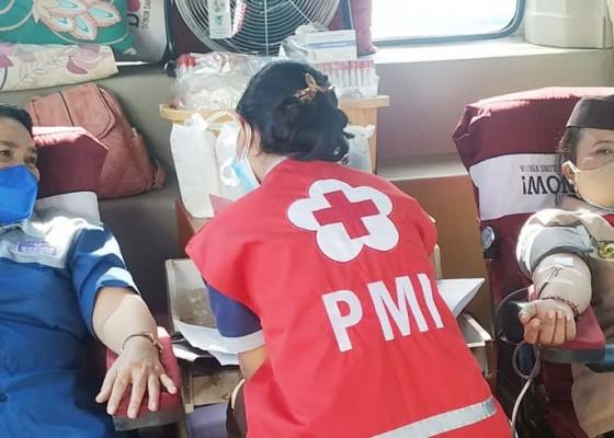 Nusabali.com - peringati-hari-pramuka-ke-60-kwarcab-buleleng-gelar-donor-darah