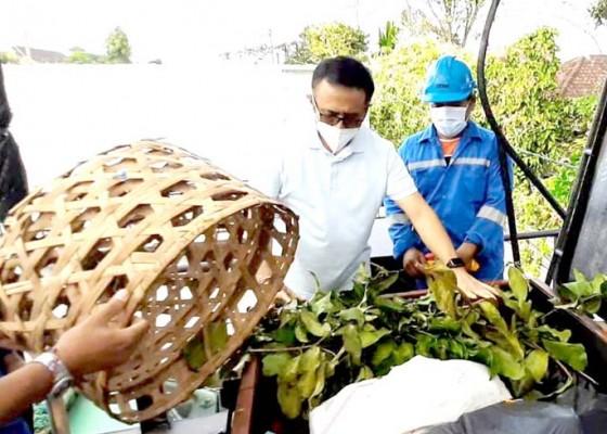 Nusabali.com - walikota-jaya-negara-tinjau-uji-coba-mesin-pengolah-sampah