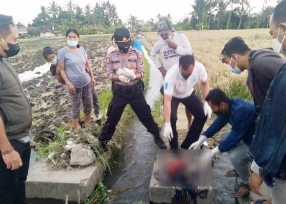 Nusabali.com - orok-ditemukan-membusuk-di-saluran-irigasi