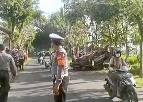 Nusabali.com - tabrak-pohon-perindang-sopir-kijang-tewas