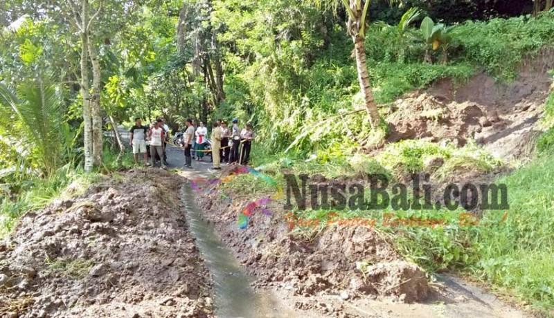 www.nusabali.com-jalur-alternatif-batukaru-jatiluwih-tertutup-lumpur