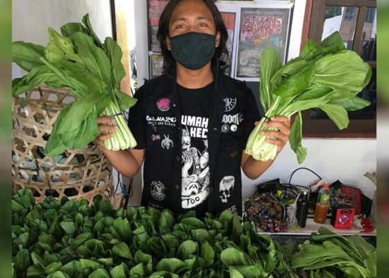 Nusabali.com - respons-ppkm-berkelanjutan-punk-pangan-pilih-bagikan-sembako