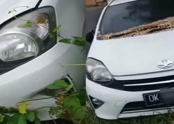 Nusabali.com - mobil-parkir-berbulan-bulan-ditumbuhi-rumput