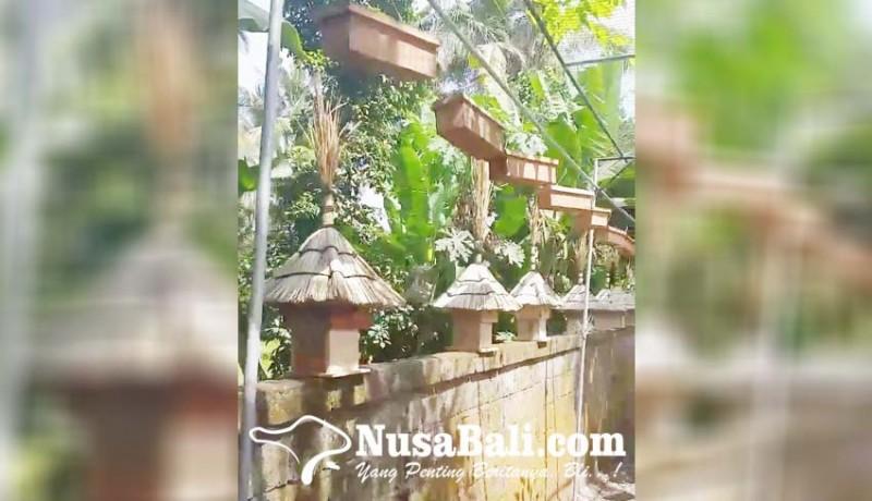 www.nusabali.com-peternak-madu-kela-kela-ajak-warga-pasang-koloni-di-rumah