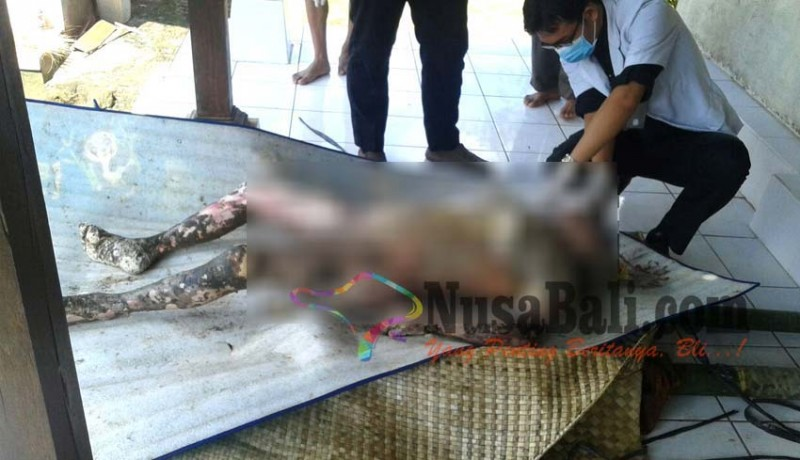 www.nusabali.com-hilang-sepekan-nenek-ditemukan-tewas