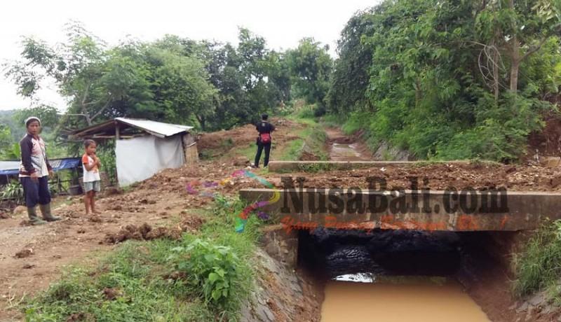 www.nusabali.com-ratusan-hektare-terancam-gagal-panen