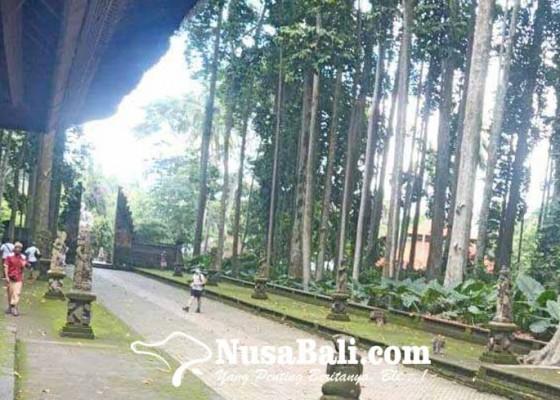 Nusabali.com - bupati-giri-prasta-upayakan-bantu-sejumlah-dtw