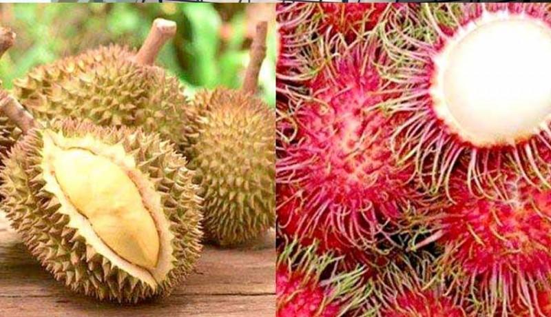 www.nusabali.com-kesehatan-nikmati-manfaat-buah-tropis