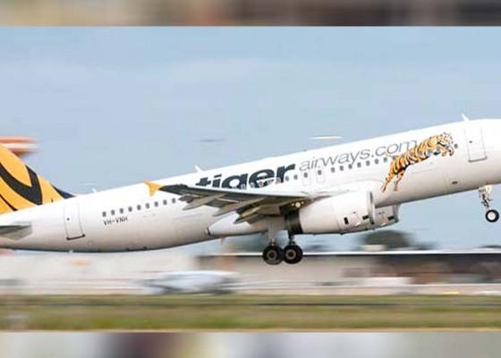 Nusabali.com - tiger-airways-dipaksa-stop-terbangi-australia-bali