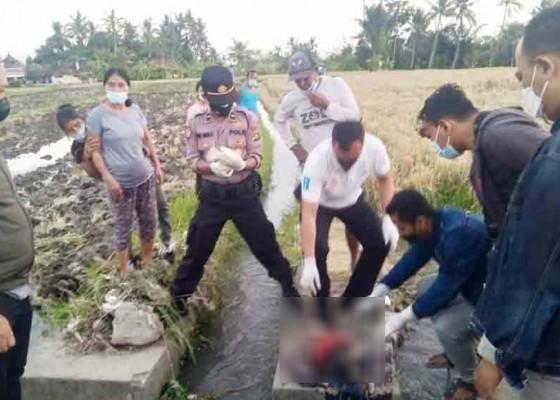 Nusabali.com - sekujur-tubuh-luka-memar-ada-bekas-jeratan-di-leher