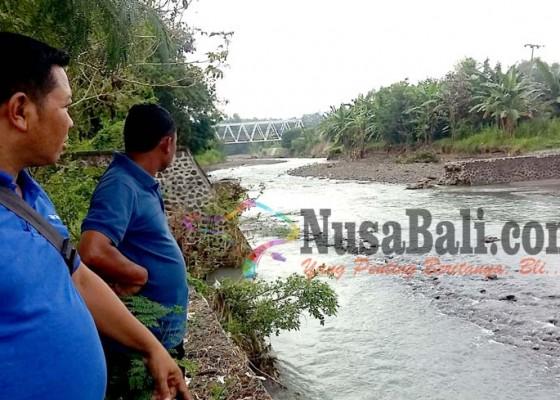 Nusabali.com - petani-tiga-subak-di-seririt-pengeng