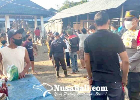 Nusabali.com - polsek-pantau-khusus-pasar-hewan-rubaya