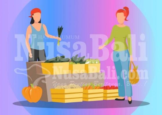 Nusabali.com - stok-berlimpah-harga-cabai-anjlok