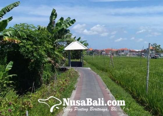 Nusabali.com - subak-kerdung-menjaga-warisan-pertanian-di-tengah-kota-denpasar