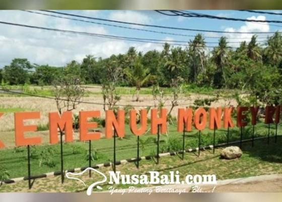 Nusabali.com - terhalang-sarana-dan-prasarana-soft-opening-monkey-river-kemenuh-diundur
