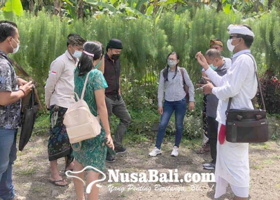 Nusabali.com - disdikpora-rekomendasikan-3-calon-pemuda-pelopor