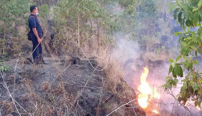 www.nusabali.com-belasan-hektare-lahan-konservasi-terbakar