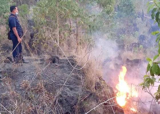 Nusabali.com - belasan-hektare-lahan-konservasi-terbakar
