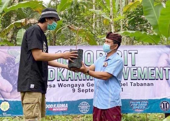 Nusabali.com - pemuda-wongaya-gede-terima-bantuan-bibit-alpukat-aligator