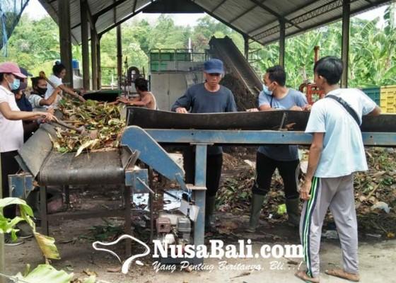 Nusabali.com - banjar-di-wilayah-kesiman-kertalangu-setor-sampah-organik-untuk-dijadikan-kompos