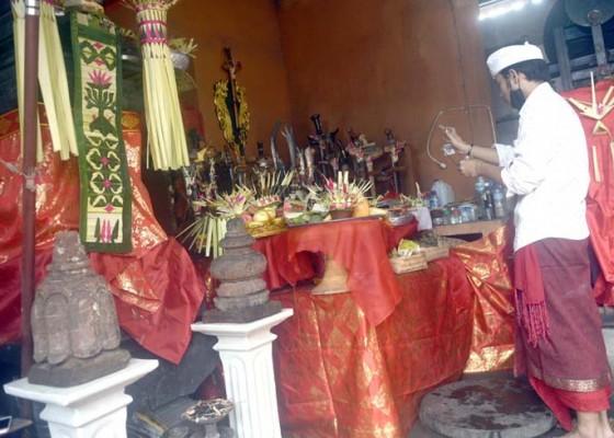 Nusabali.com - tumpek-landep