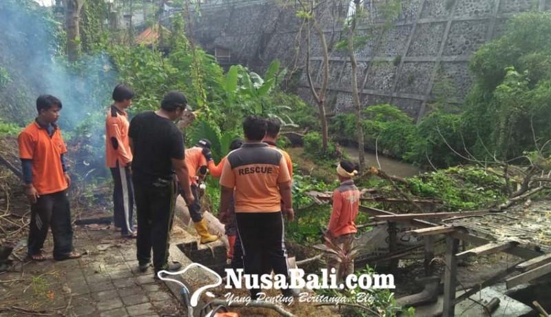 www.nusabali.com-pohon-tumbang-menimpa-pemandian-umum-pura-beji-ketewel