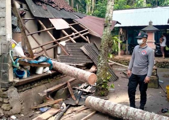 Nusabali.com - rumah-kelian-banjar-tertimpa-pohon