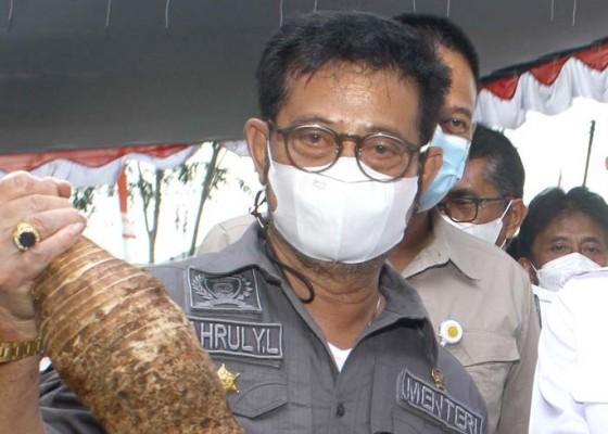 Nusabali.com - mentan-akui-defisit-produksi-pupuk-ri