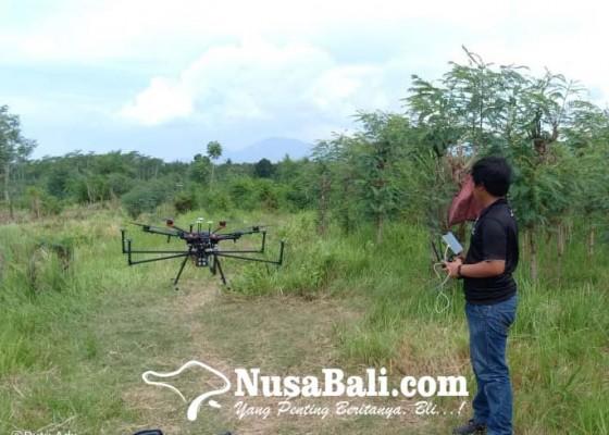 Nusabali.com - usul-serapan-tenaga-kerja-hingga-perlindungan-kawasan-suci