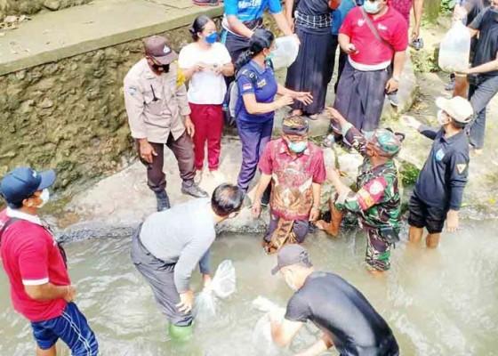 Nusabali.com - dinas-perikanan-targetkan-tebar-21-juta-benih-ikan