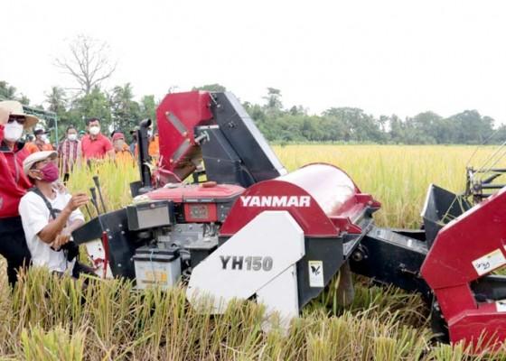 Nusabali.com - tabanan-akan-buat-tata-niaga-produk-pertanian