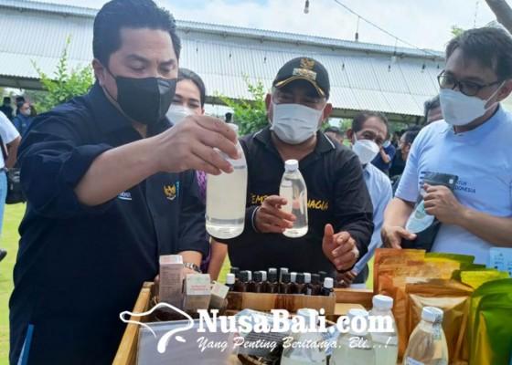 Nusabali.com - menteri-bumn-soroti-harga-gabah-rendah