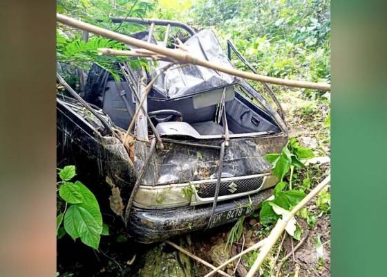 Nusabali.com - pick-up-terjun-ke-jurang-sopir-selamat
