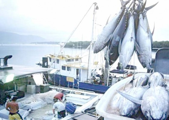 Nusabali.com - penangkapan-ikan-dibatasi-sistem-kuota