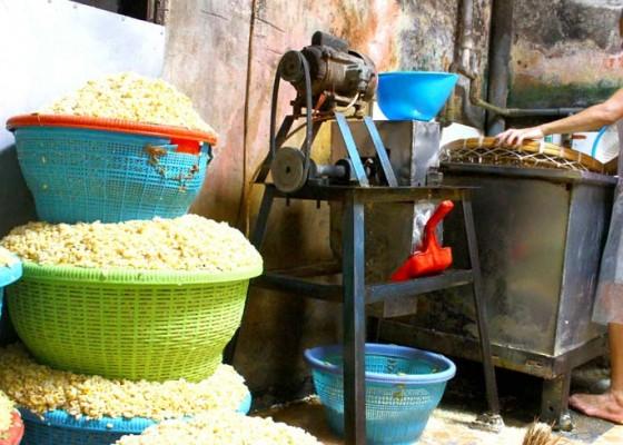 Nusabali.com - dampak-fluktuasi-harga-kedelai
