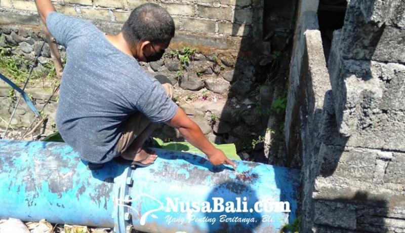www.nusabali.com-duel-berdarah-satu-sekarat