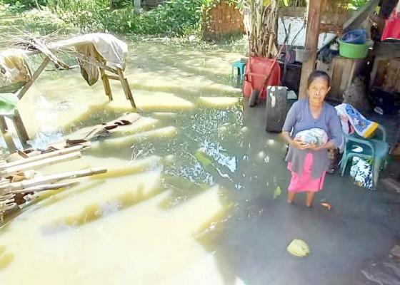 Nusabali.com - banjir-sungai-terjang-6-rumah-warga