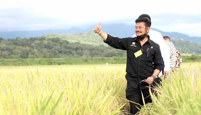 www.nusabali.com-data-statistik-penting-bagi-pertanian