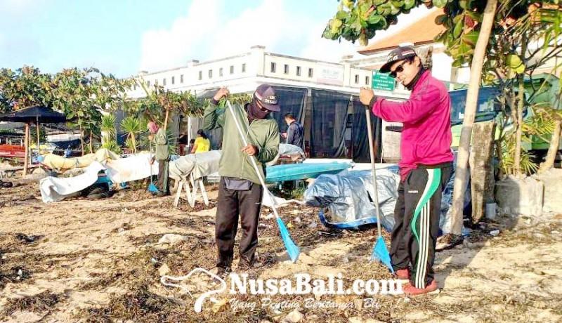 www.nusabali.com-tiap-hari-dinas-lhk-bersihkan-3-ton-sampah