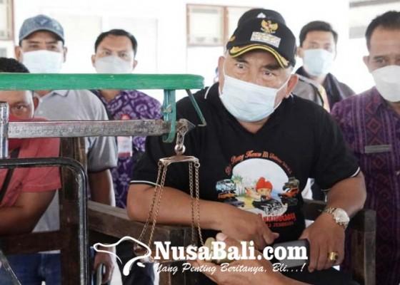 Nusabali.com - pad-di-tpi-pengambengan-diduga-bocor