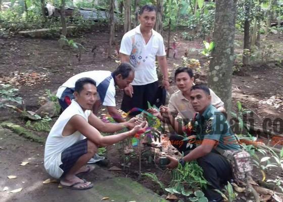 Nusabali.com - 52-butir-peluru-ditemukan-di-beratan