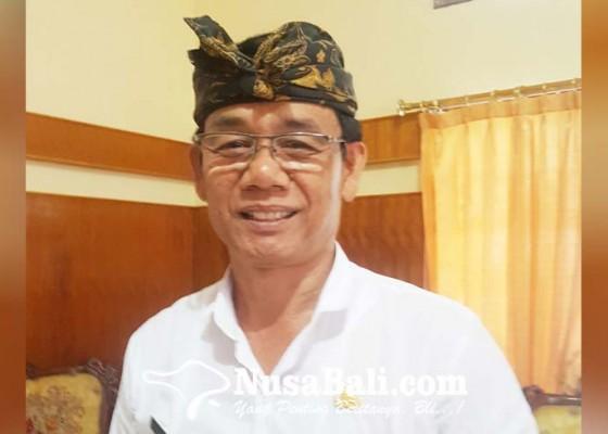 Nusabali.com - populasi-minim-varietas-babi-hitam-bali-kembali-dibangkitkan