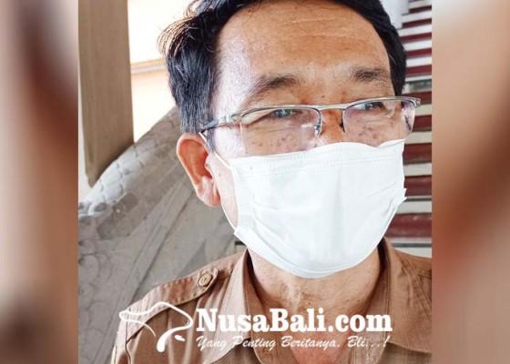 Nusabali.com - jatah-pupuk-kimia-dikurangi-lahan-pertanian-organik-jadi-solusi