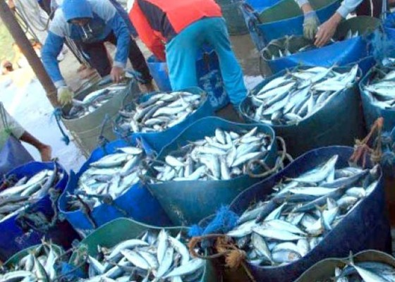 Nusabali.com - ri-harus-jadi-trendsetter-sektor-perikanan