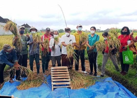 Nusabali.com - denpasar-inisiasi-pertanian-organik