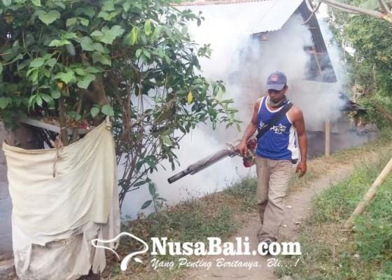 Nusabali.com - kasus-db-di-buleleng-turun-drastis