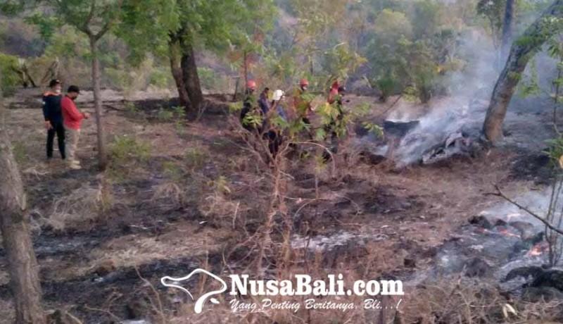 www.nusabali.com-kebakaran-lahan-damkar-habiskan-15000-liter