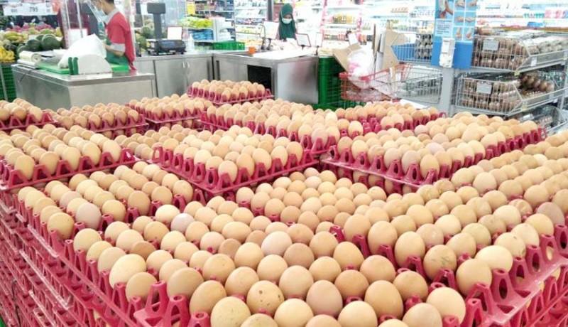 www.nusabali.com-peternak-inginkan-harga-telur-rp-21000kg