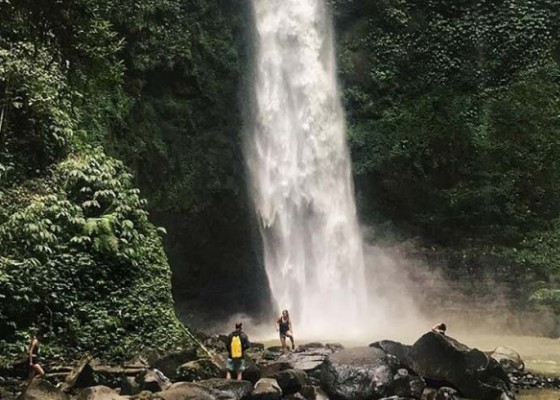 Nusabali.com - kawanan-monyet-menambah-daya-tarik-wisata-air-terjun-nungnung